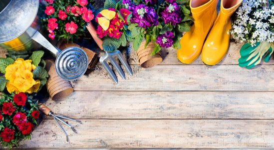 Read more about the article Your Home's Spring Maintenance Checklist [INFOGRAPHIC]