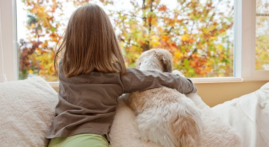 5 Reasons to Sell This Fall