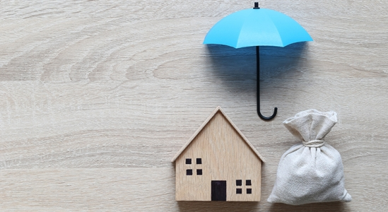 Read more about the article 4 Major Reasons Households in Forbearance Won't Lose Their Homes to Foreclosure