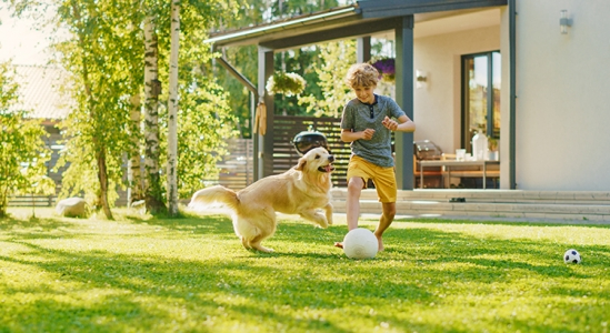 Read more about the article Why This Isn't Your Typical Summer Housing Market